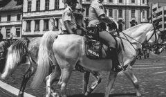 Polizeipferd Leberkäseverbot